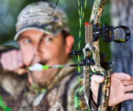 Wasp Archery broadhead regulations by state