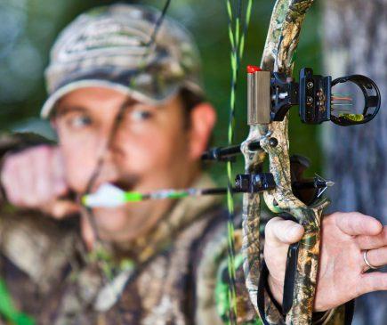 Wasp Archery broadhead regulations by state