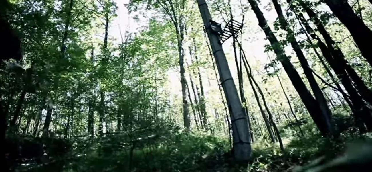 hang-your-deer-hunting-tree-stands
