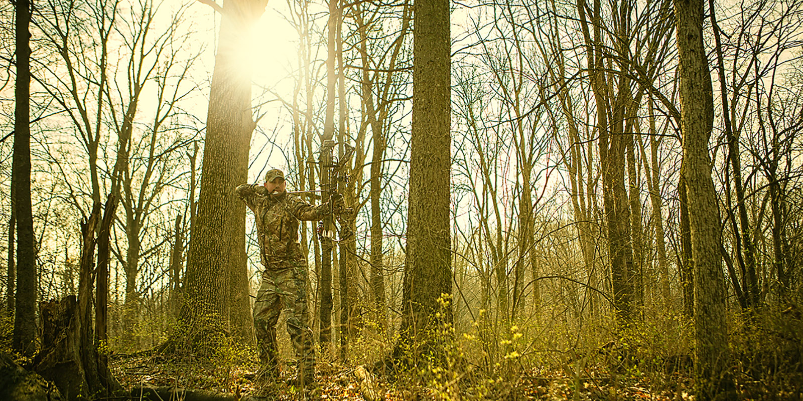 bowhunter in the woods