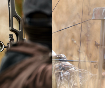 Single-Pin vs. Multi-Pin Sights – Which is Better?