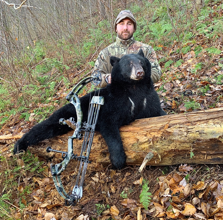 Wasp Drones strike down two more black bears